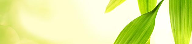 TotalEnergies preocupa-se com o meio ambiente